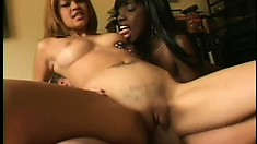 White guy has a hot black babe and a sexy Latina girl sharing his dick